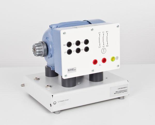 MSA 6 Dreiphasen-Induktionsmotor 400/690 V mit Käfigläufer 0,3