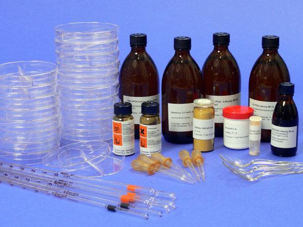 Grundlagenexperimente, großer Enzym-Kit